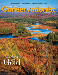 A photo of Hitchins Pond Overlook by Wayne Jones graces the front cover of the October 2017 issue of Conservationist magazine
