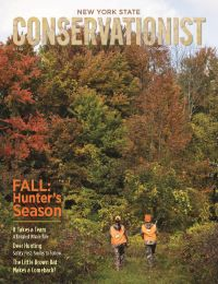 The front cover of the October/November issue of Conservationist features a fall hunting photo