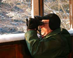 An eagle watcher in the Mongaup blind