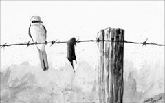 A painting of a shrike perched next to a mouse that it has impaled on barbed wire