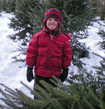 A young boy in a red jacket at a Christmas tree farm