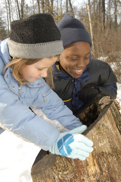 Two girls investigate the inside of a hollow stump