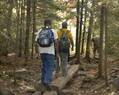 Boys with daypacks taking a hike through the woods