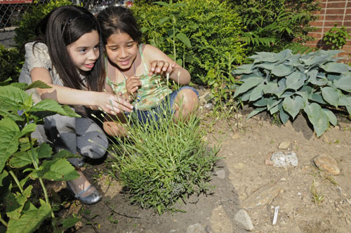 Two young girls looking at a perennial plant outdoors