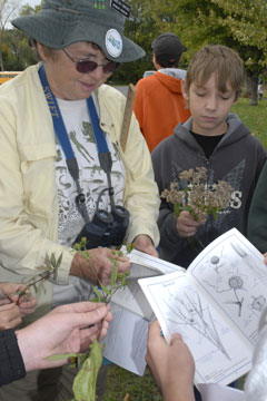 An instructor helps students use a plant key to identify trees and shrubs