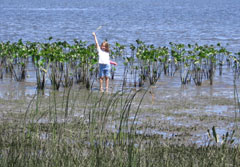 A young girl standing near the water's edge holding up a stick over her head