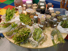 A round table with bags and jars of edible wild plants displayed.