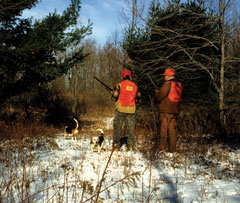 Two hunters in their orange vests standing in the snow-covered woods with two dogs
