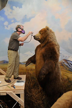 A man with a respirator stands on a scaffold using an air brush to touch uo the nose of a large stuffed bear