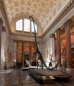 An ornate museum hall with a vaulted ceiling exhibiting dinosaur skeletons