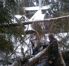Forest ranger by a plane crash in the woods