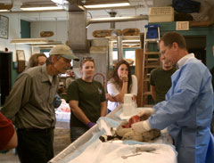 AA biologist examines a dead animal in a lab while people observe