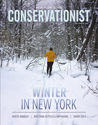 The December 2018 cover of Conservationist features a cross-country skier photographed by E. Craig