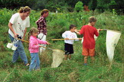 Adults and children holding bug nets in a meadow