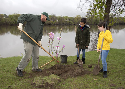 man and two children planting a tree