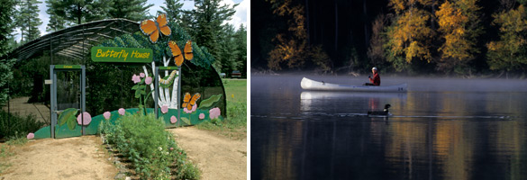 Butterfly house and person canoeing on a lake (image property of Bill Banaszewski)