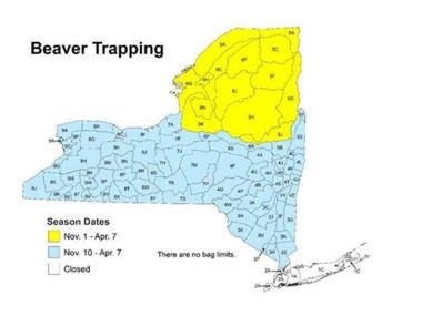 Map of NY showing beaver trapping season dates