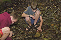 kids on an over/under hike