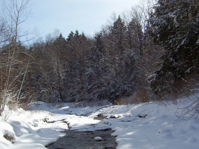 Snow covered section of Canadaway Creek