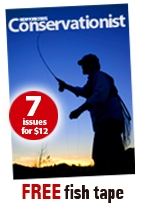 Promotion for Conservationist magazine - seven issues $12