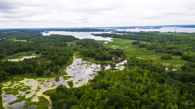 aerial view of marshy river with lush green trees surrounding