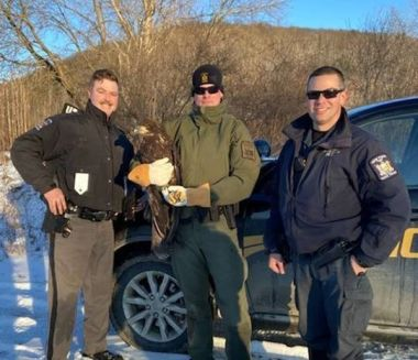 Two troopers and an ECO pose for a photo with the injured bald eagle they rescued