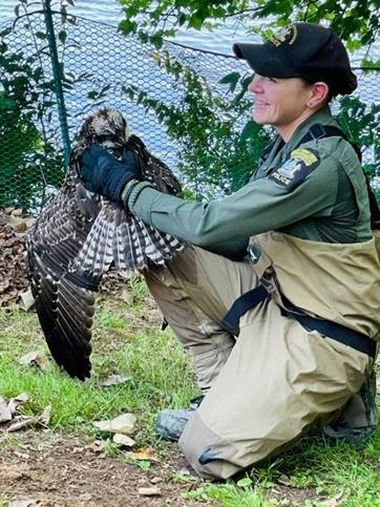 ECO holding large bird