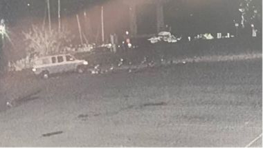 security camera still of van running over geese