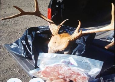 photo of confiscated deer parts