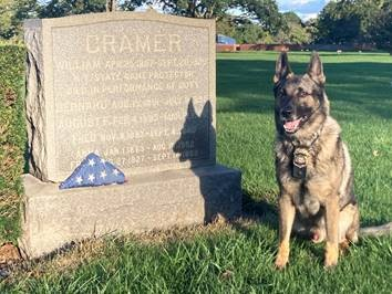 K9 Cramer sitting next to ECO Cramer's headstone