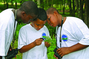 three boy campers looking at a plant through a magnifying glass