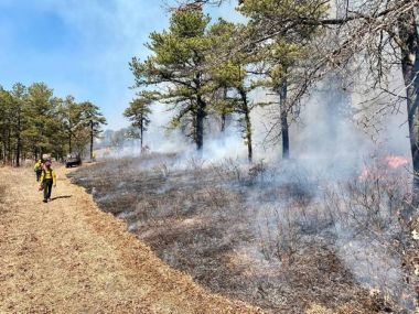 Forest Rangers Monitoring the edge of a prescribed burn in the woods