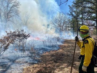 Forest Ranger stands at the edge of a prescribed burn in the woods