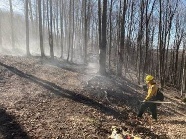 Forest Ranger monitoring wildfire in the woods