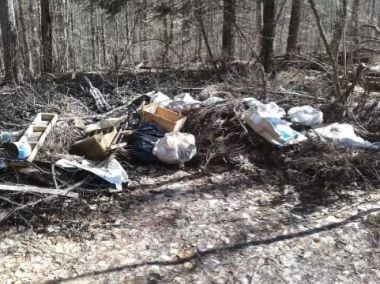 large pile of debris and garbage dumped in the woods