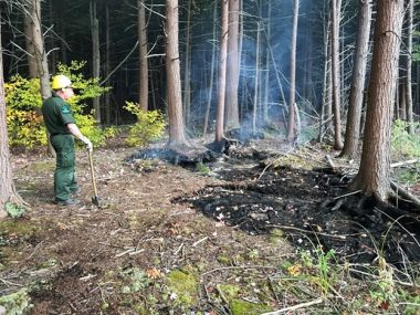 Forest Ranger in the woods monitoring a smoky wildfire