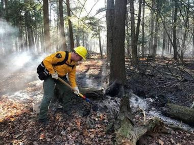 Forest Ranger in the woods helping exstinguish a forest fire