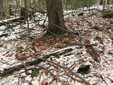 Tree stand in the woods that has fallen down from the side of a tree