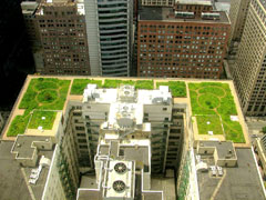 Aerial shot of a building with a green roof in an urban setting