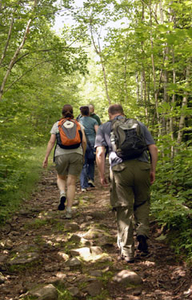 A group of hikers on a trail through the woods