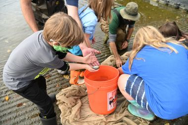 children place fish into orange bucket