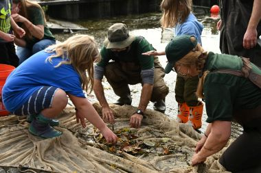 Adults and children gather around large net to look at seining results
