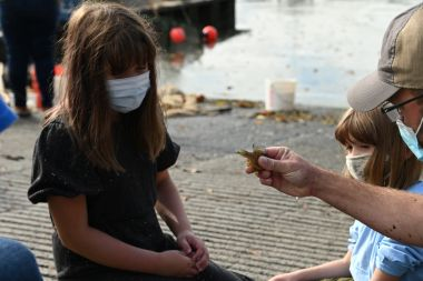Children look a fish caught during seining