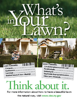What's In Your Lawn? poster