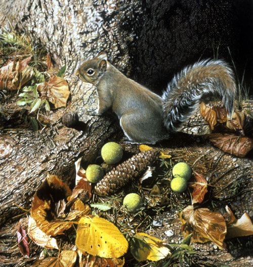A painting of a squirrel at the base of a tree, with nuts, pinecones and leaves by Mark Verna