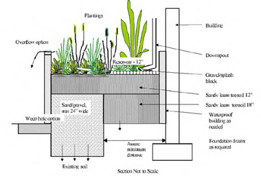 Cross-sectional diagram of how a mini rain garden in a container is built
