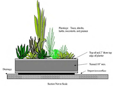 Cross-sectional diagram of a rain garden in a planter