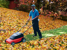 A man mows through a thick layer of fall leaves on his lawn