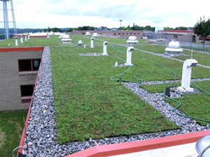 Onondaga County Correctional Facility Green Roof