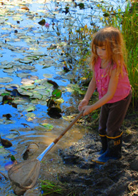 A young girl in a pink blouse dips a net in a lily pond